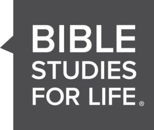 BSFL.logo